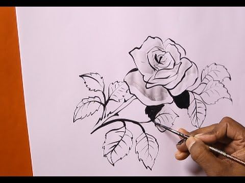 480x360 How To Draw Roses