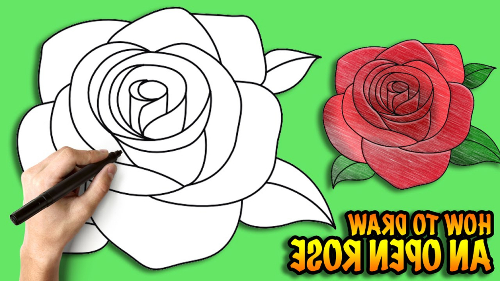 1024x576 Simple Rose Drawing Step Step How To Draw An Open Rose Easy Step