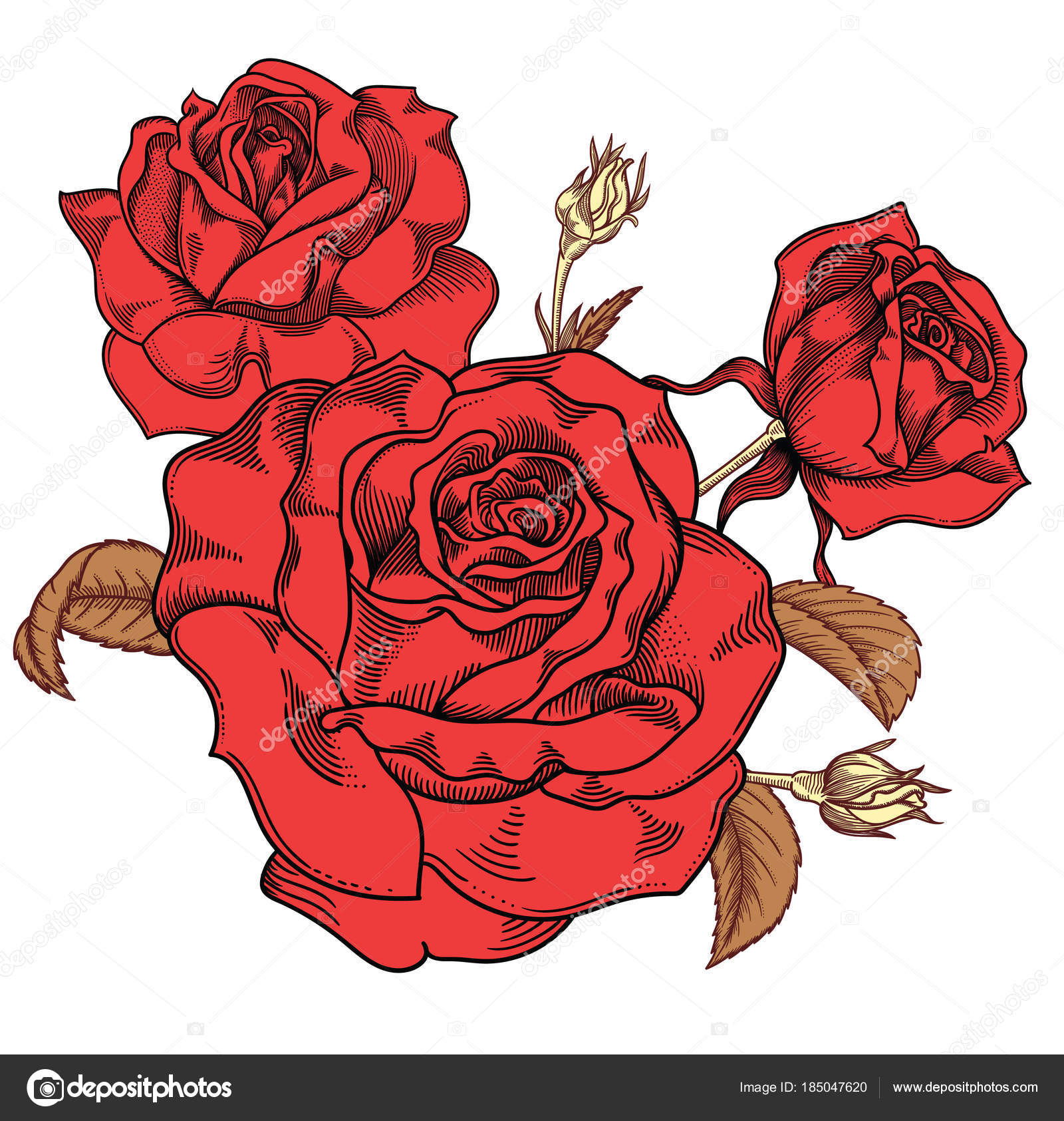 Rose Flower Drawing Images at GetDrawings.com | Free for personal ...