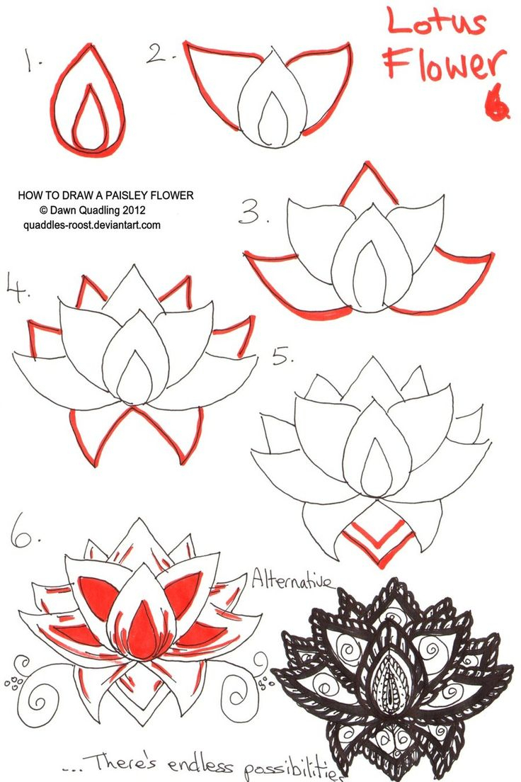 736x1104 Drawing Step By Step Flowers