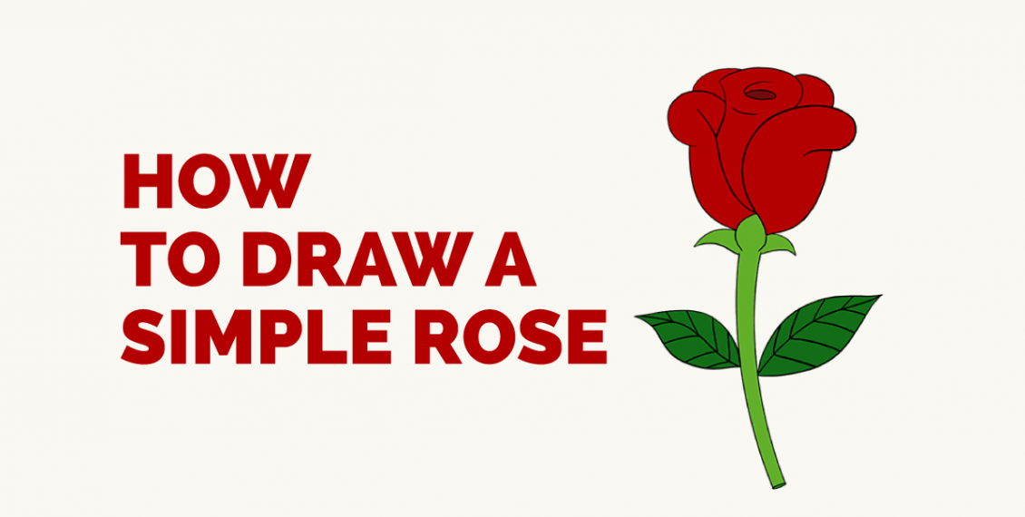 1130x570 How To Draw A Simple Rose Featured Image For Me