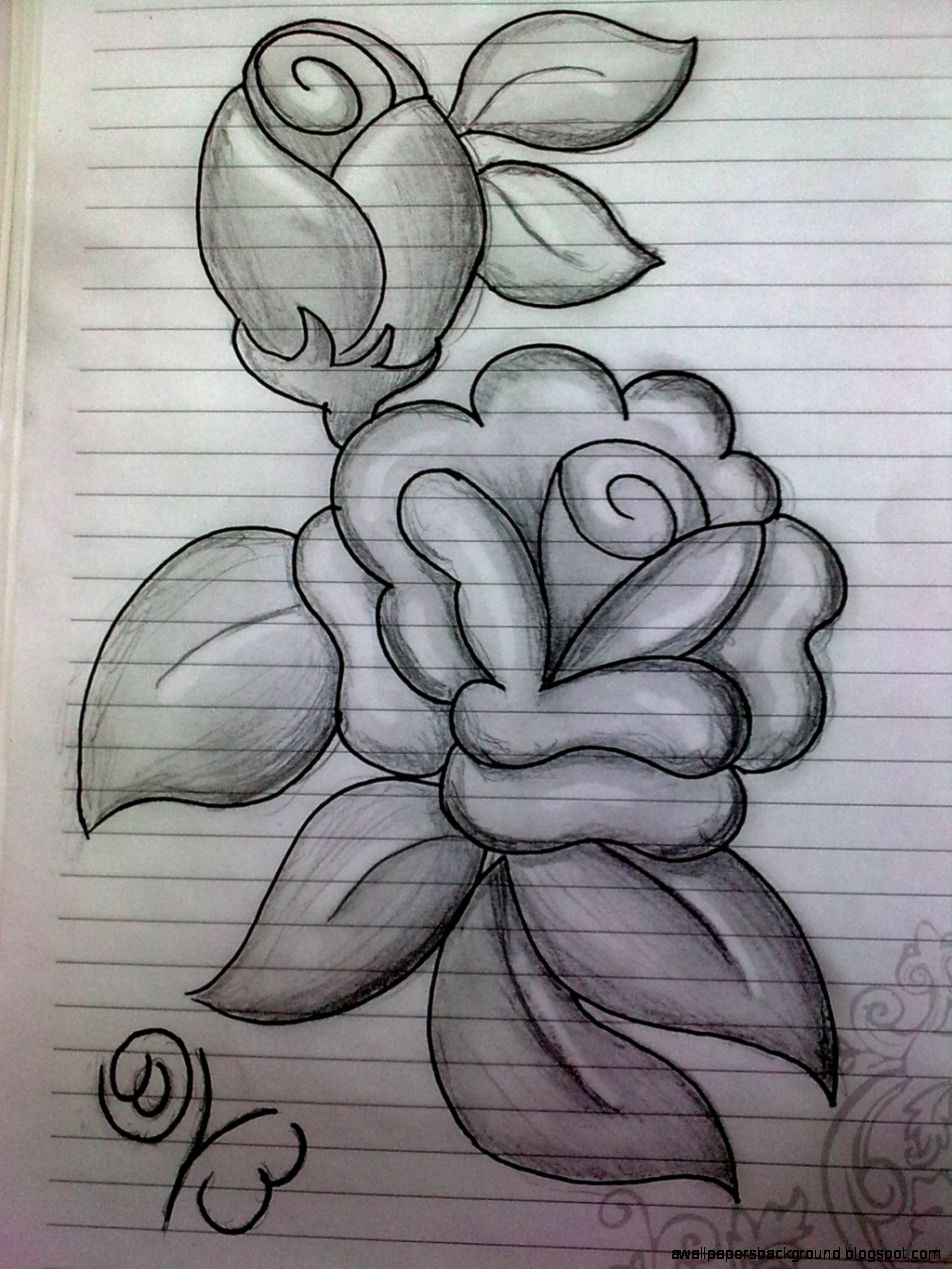 952x1269 Rose Flower Drawings In Pencil Wallpapers Background