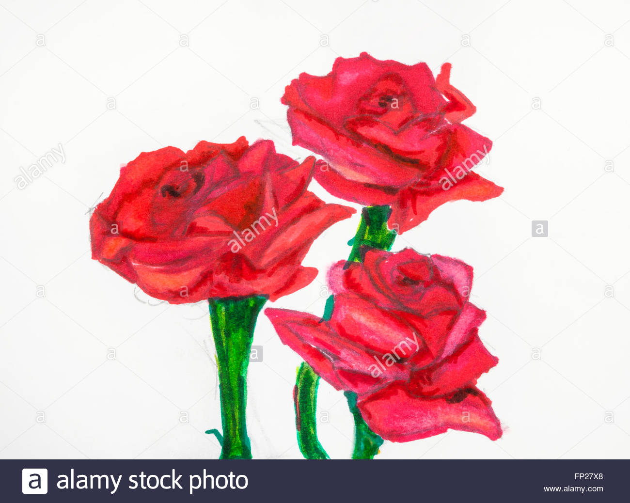 Rose Flowers Drawing at GetDrawings.com | Free for personal use Rose ...