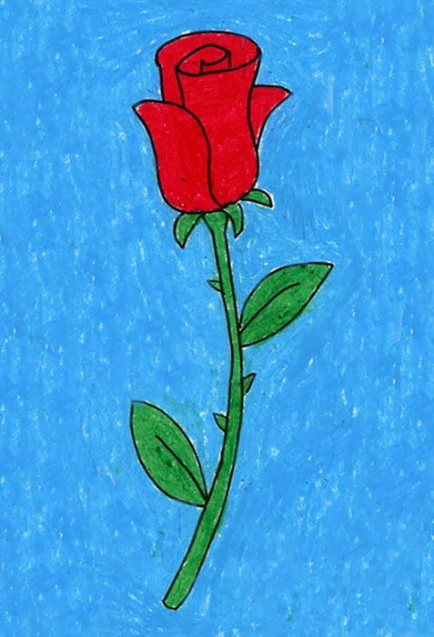 477x700 Draw A Rose