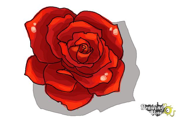 600x400 How To Draw An Open Rose