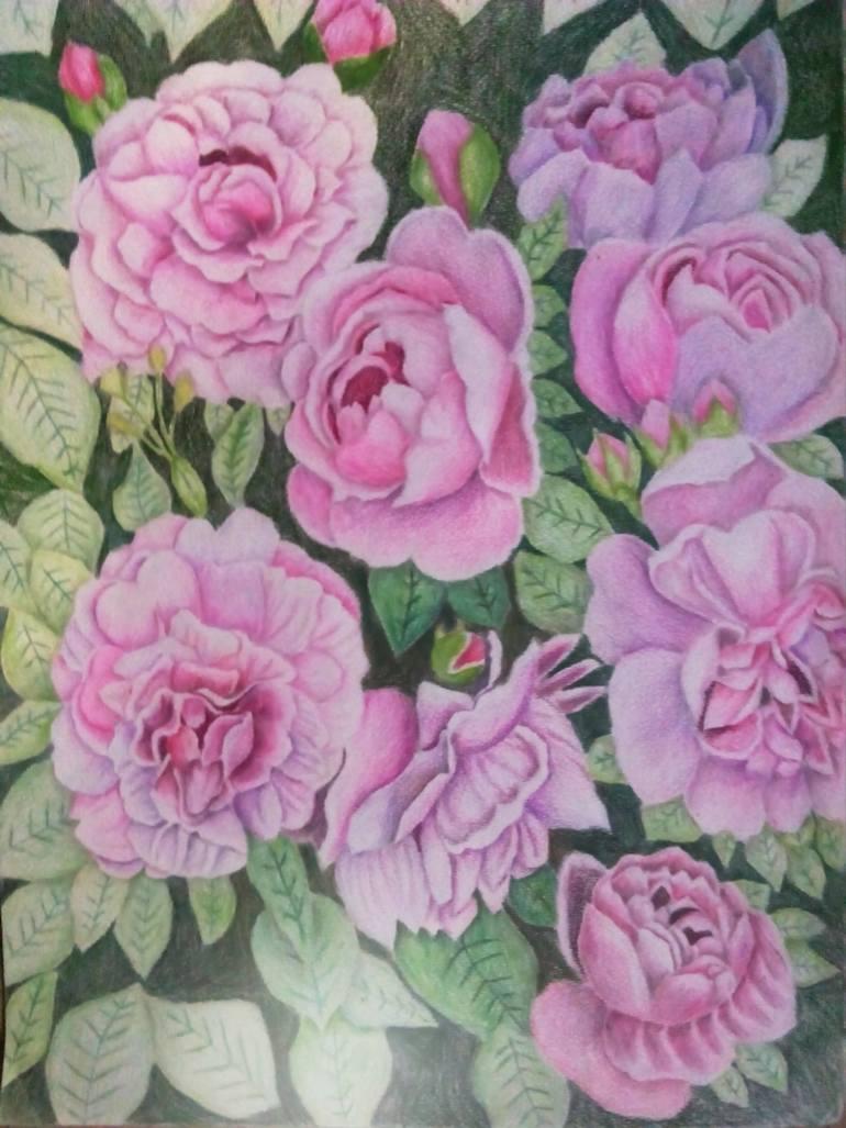 770x1027 Saatchi Art Purple Rose Garden Drawing By Sunshine Amos