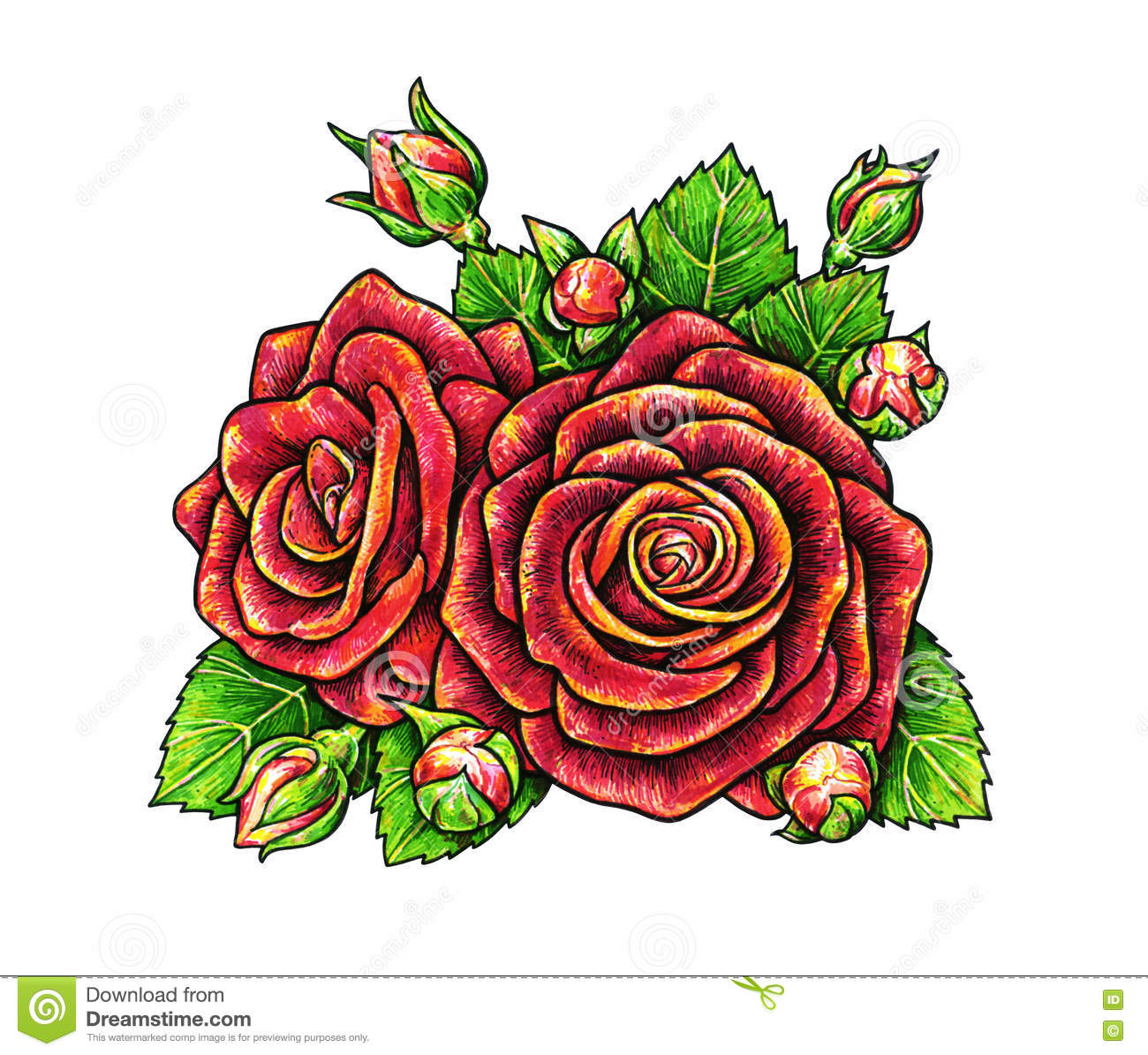 Rose Image Drawing at GetDrawings.com | Free for personal use Rose ...