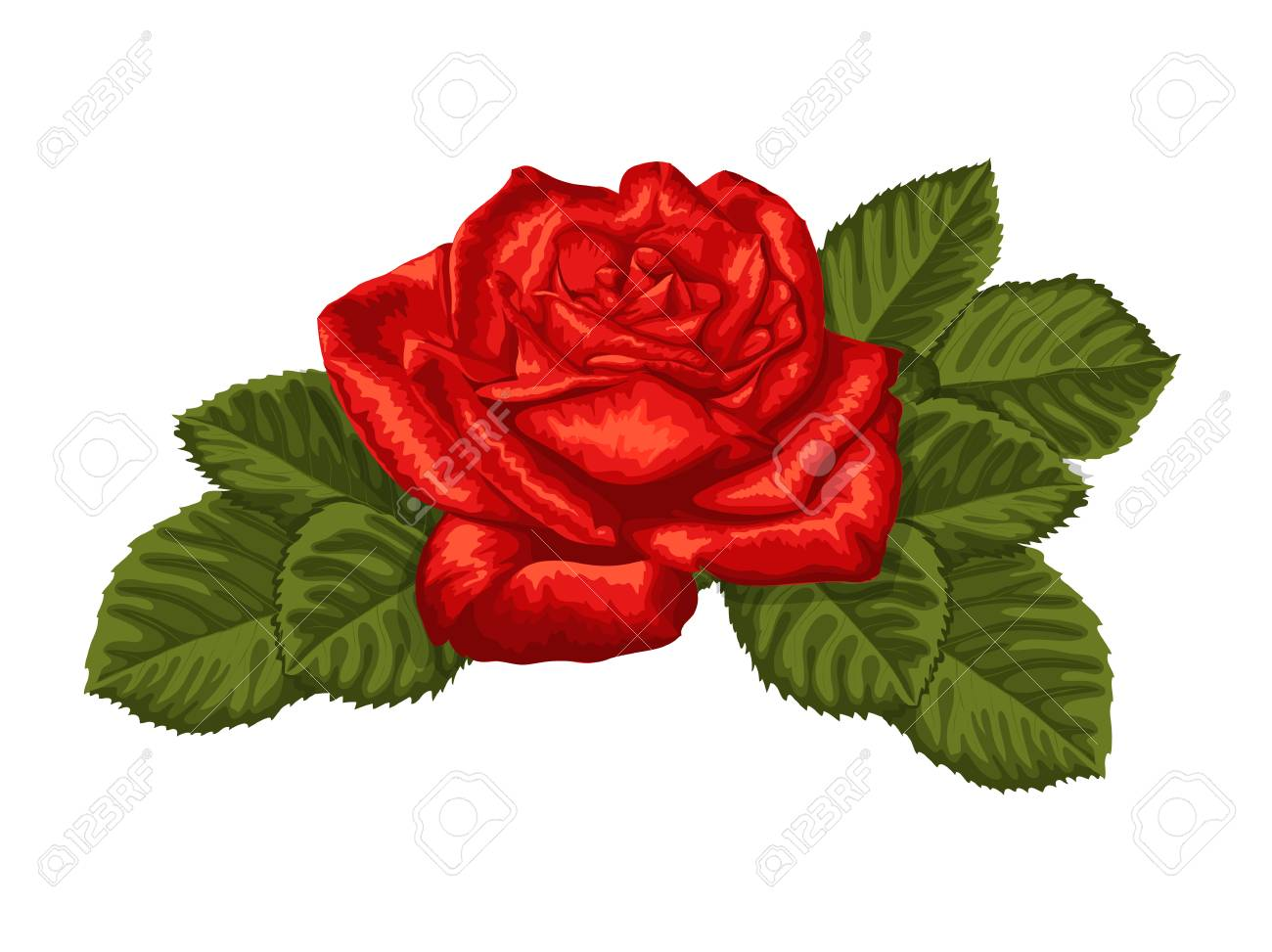 Rose Leaf Drawing at GetDrawings.com | Free for personal use Rose ...