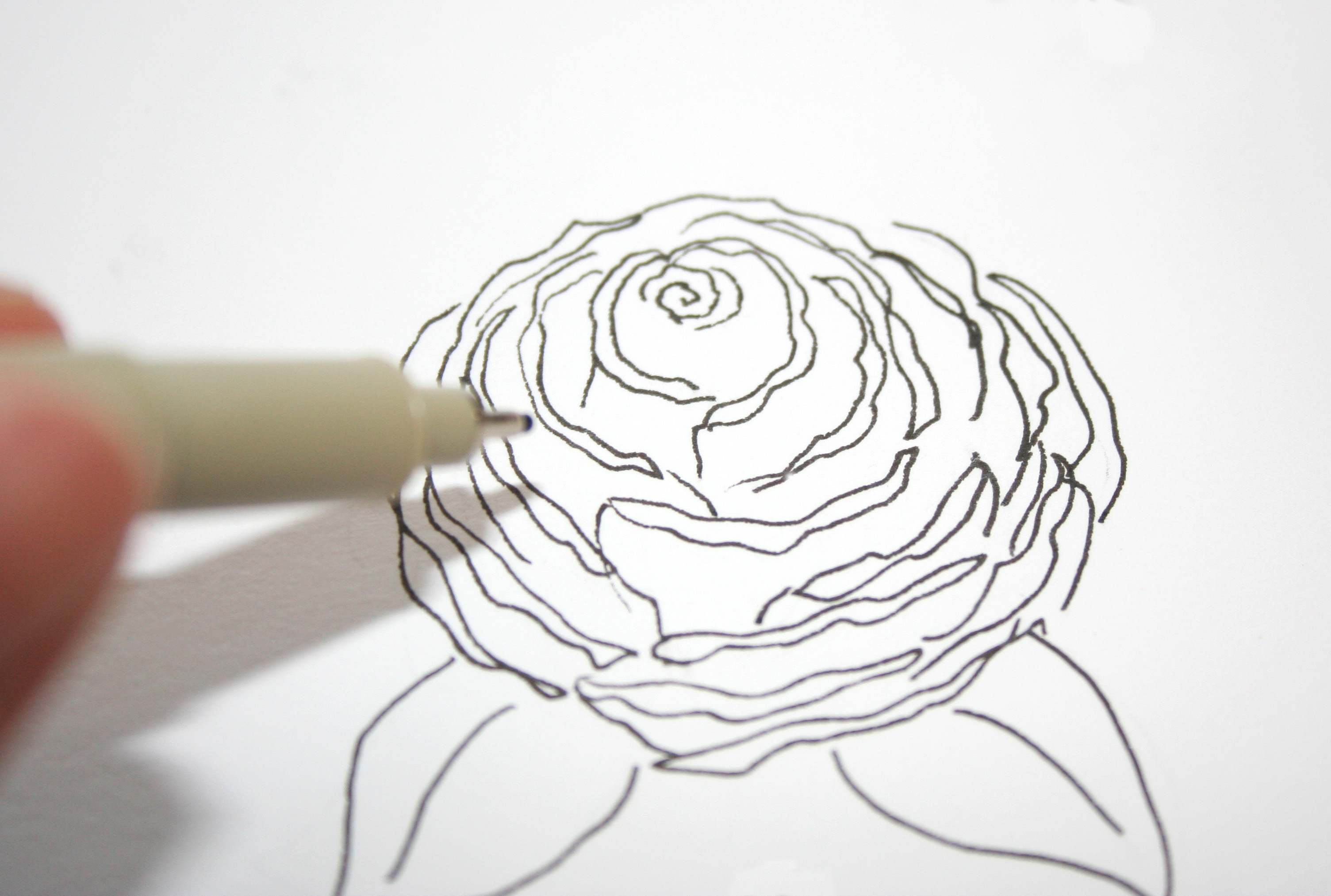 Pencils 5 simple steps 3009x2026 gallery how to draw a open rose