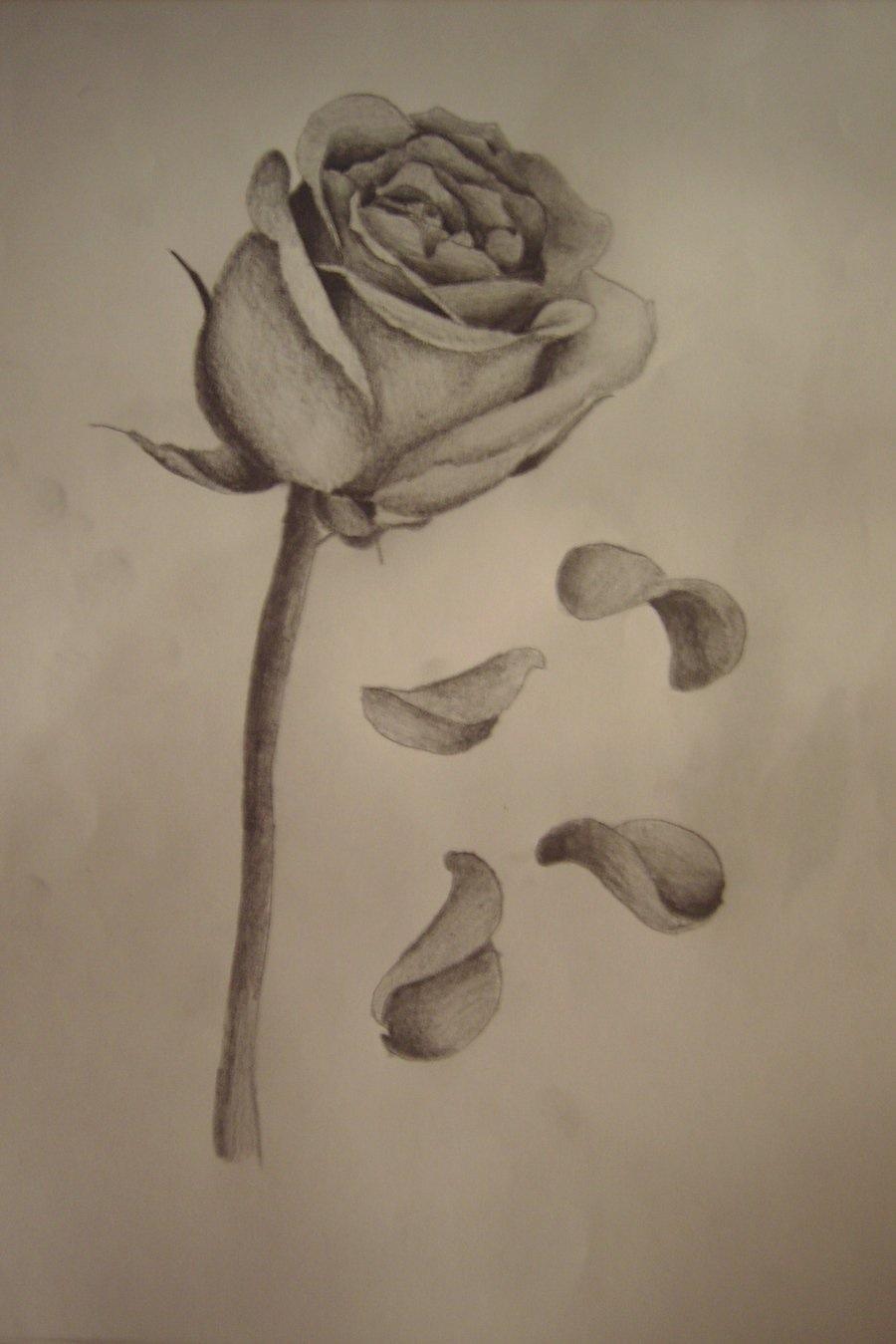 900x1349 Rose With Falling Petals Tattoos Tattoo, Tatting