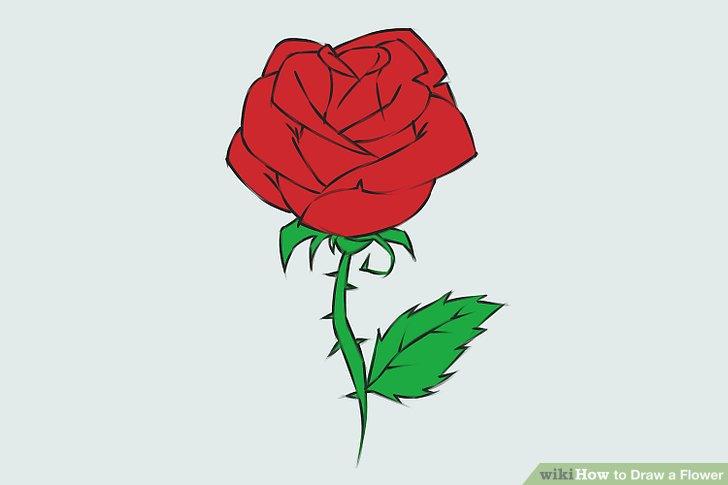 728x485 9 Easy Ways To Draw A Flower
