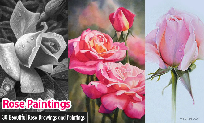660x400 25 Beautiful Rose Drawings And Paintings For Your Inspiration