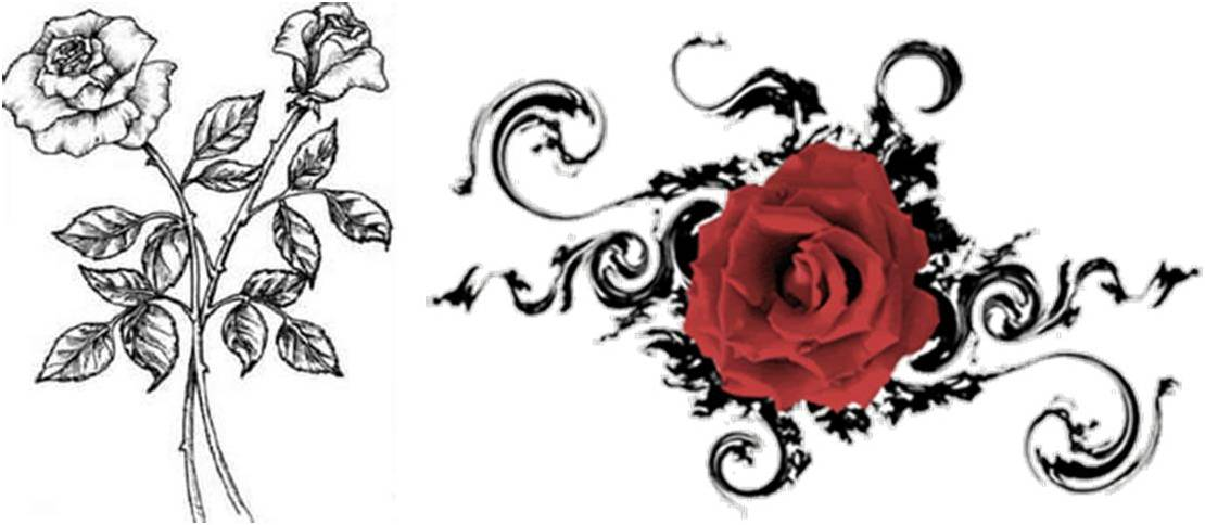 1110x484 Another Simple Design Of Rose Tattoo