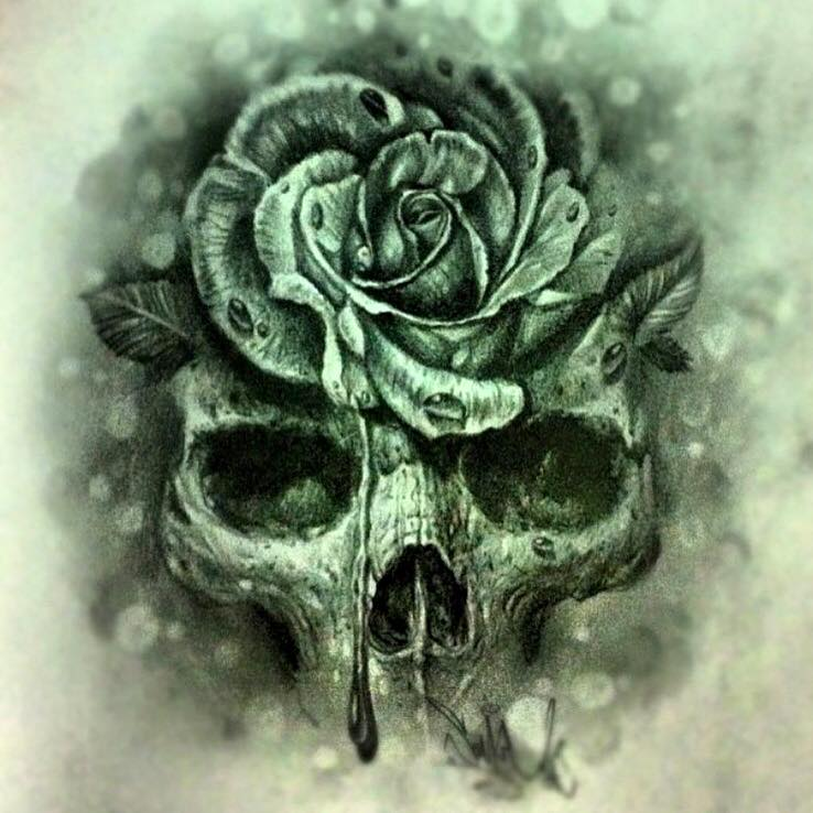 Rose Skull Drawing at GetDrawings.com | Free for personal use Rose ...
