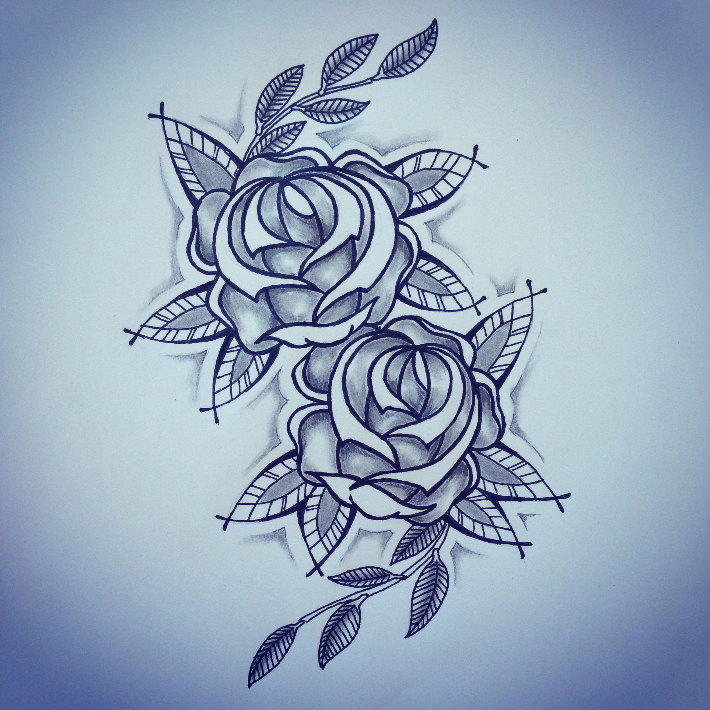 2448x2448 New Traditional Roses Tattoo Sketch By