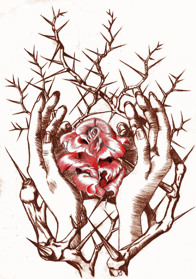 749x1067 Rose And Hands Thornbush Two C By Ray N Bow