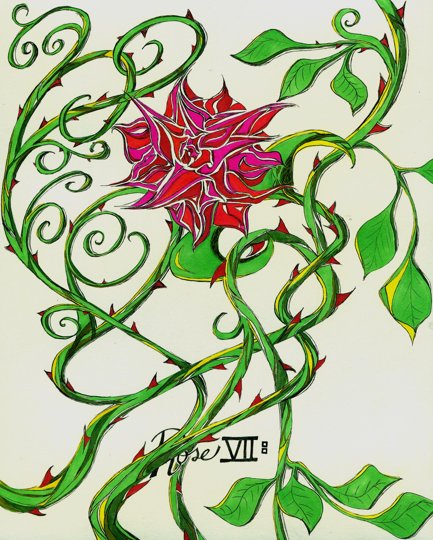 2368x2955 Thorn Yaakov's Art