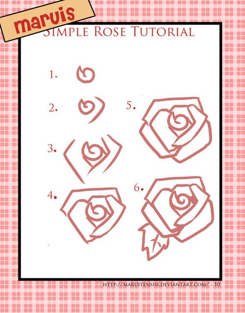 500x638 How To Draw Roses