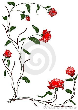 318x450 Red Rose Vine Illustration Rose Vines, Rose