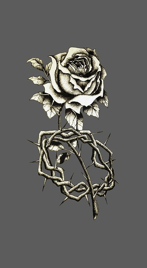 495x900 Rose Crown Thorns Drawing By Daniel P Cronin