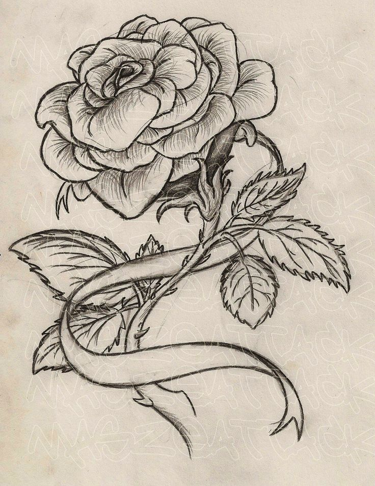 736x955 Rose With Thorns Tattoo Designs Best Tattoo Designs