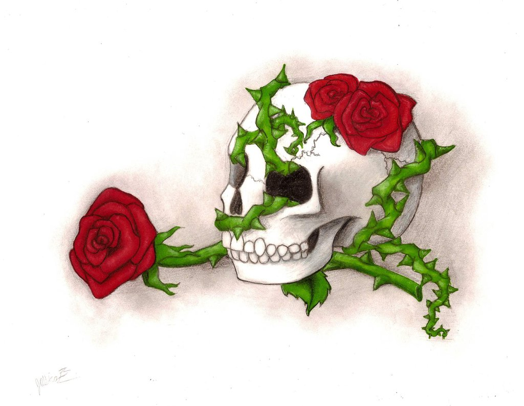 1024x794 Skull Roses And Thorn Vines By Bitterdarkangel