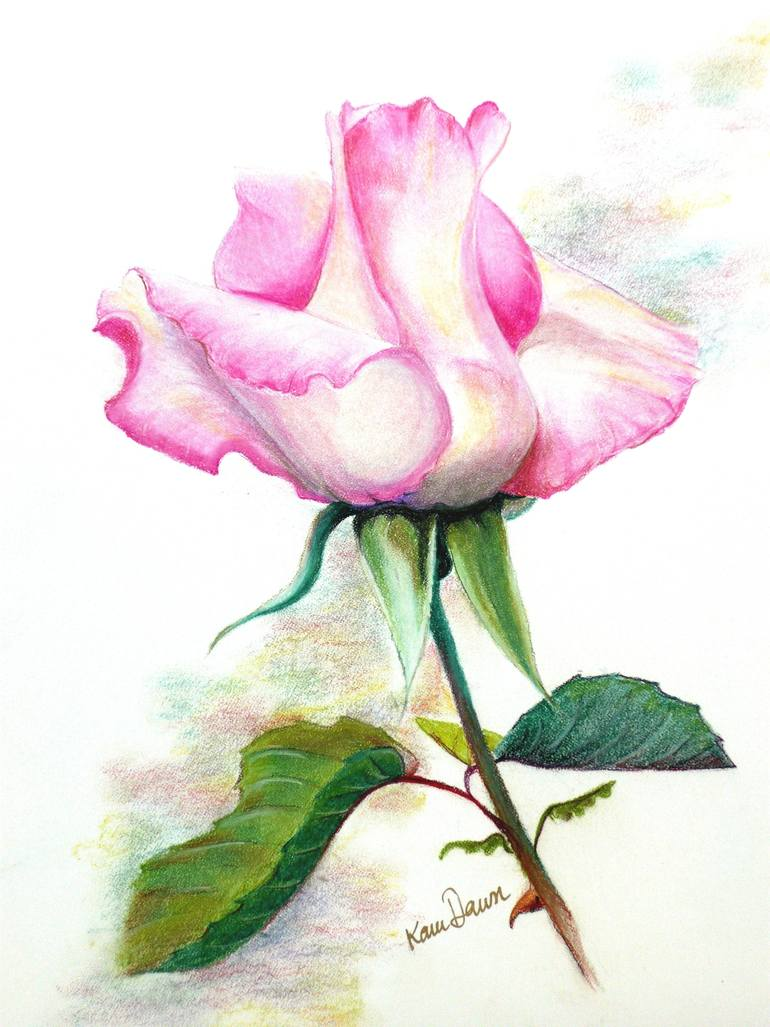 770x1027 Saatchi Art Pink Rosebud Drawing By Karin Best