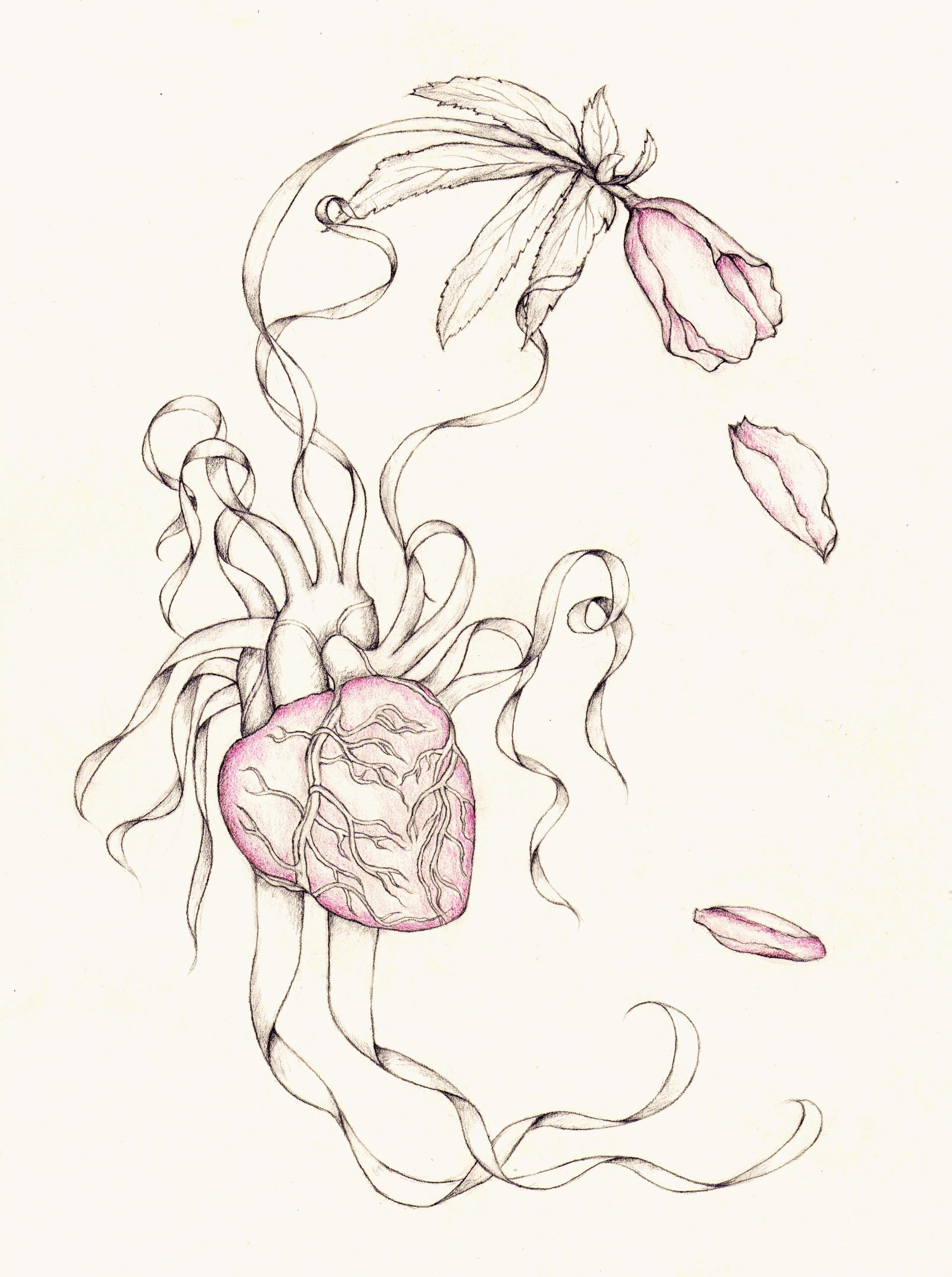 3201x4292 Flowers And Hearts Drawings Pencil Drawings Of Roses And Hearts