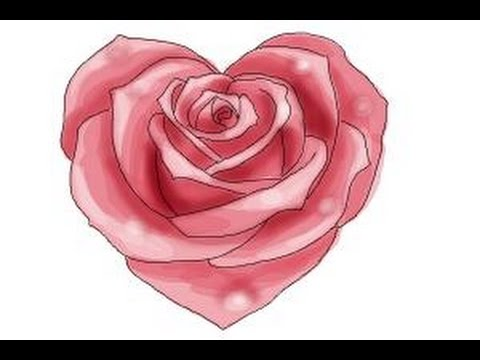 480x360 How To Draw A Heart Rose