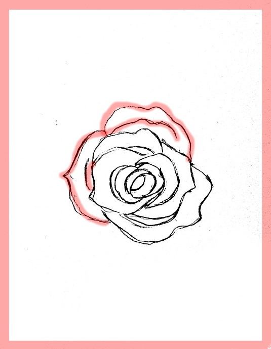 535x690 How To Draw Roses