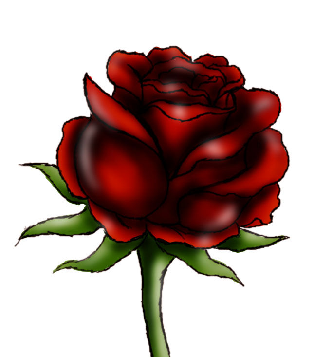 684x733 How To Draw A Red Rose 9 Steps