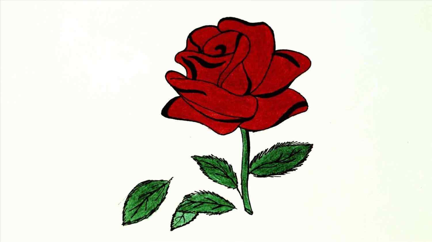 1501x842 Roses Drawings Easy Your Meme Source