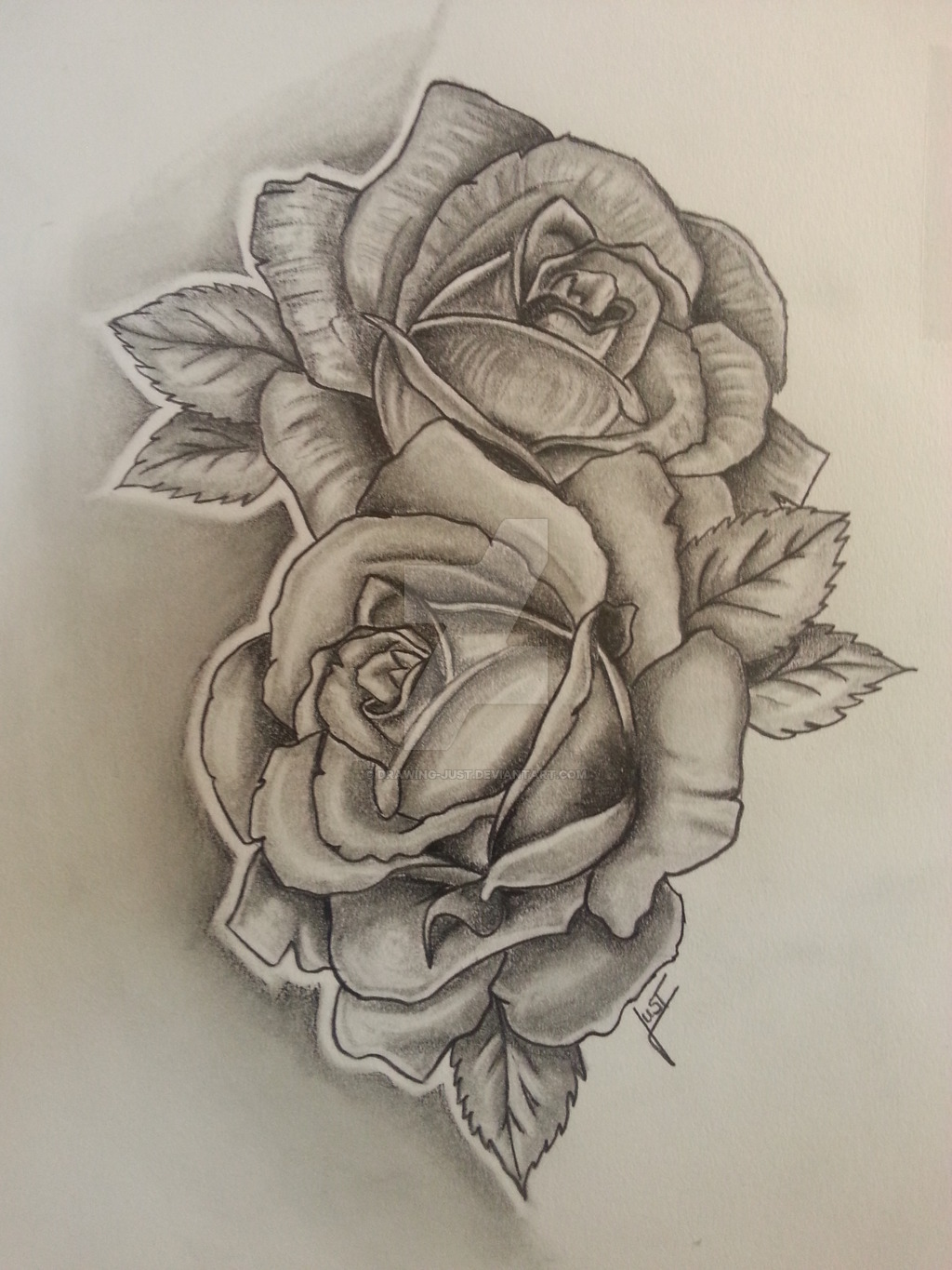 1024x1365 Hoontoidly Rose Drawing Tattoo Images