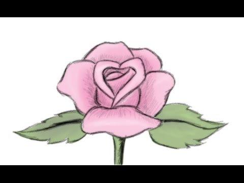 480x360 How To Draw A Beautiful Rose Flower Yzarts Yzarts