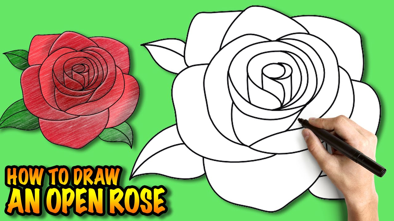 1280x720 Step By Step Rose Drawing How To Draw An Open Rose