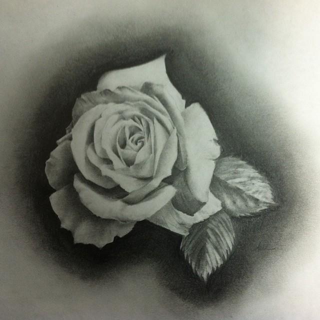640x640 Ashleymcnamaratattoo Drawings