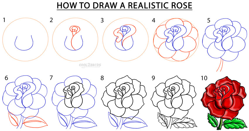 850x450 Gallery Drawings Of Roses Easy Step By