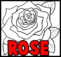 250x236 How To Draw Roses With Easy Step By Step Valentine's Day Drawing