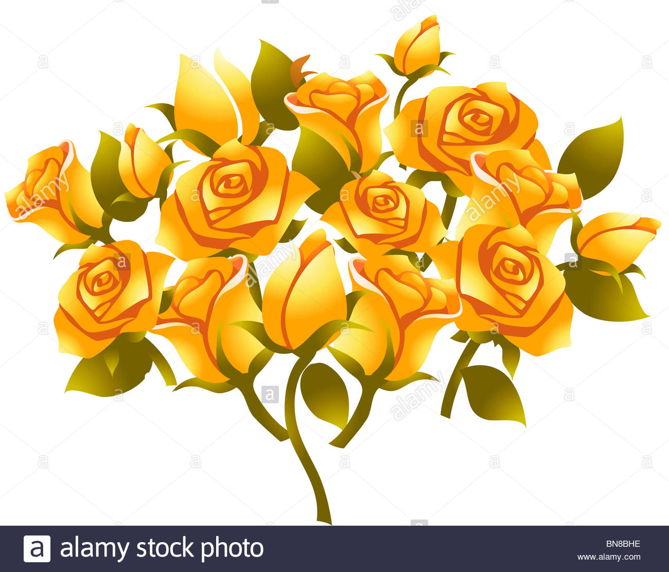 1300x1112 Illustration Drawing Of Yellow Rose Flower In White Background