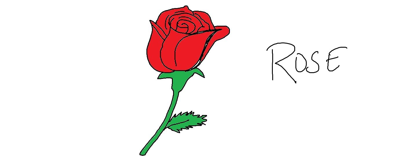 1359x540 Easy Kids Drawing Lessonshow To Draw An Easy Rose
