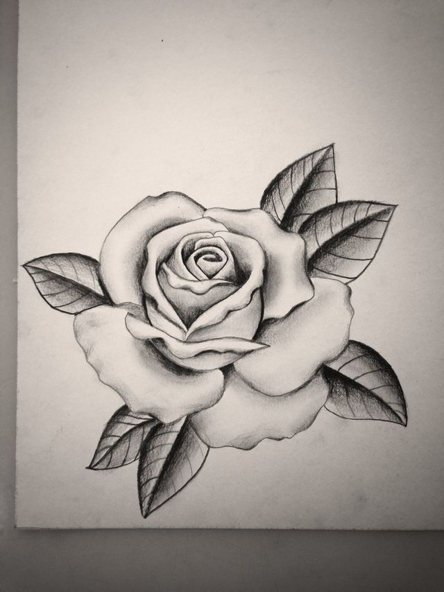 640x853 12 Best Roses Images On Tattoo Designs, Rose Tattoos