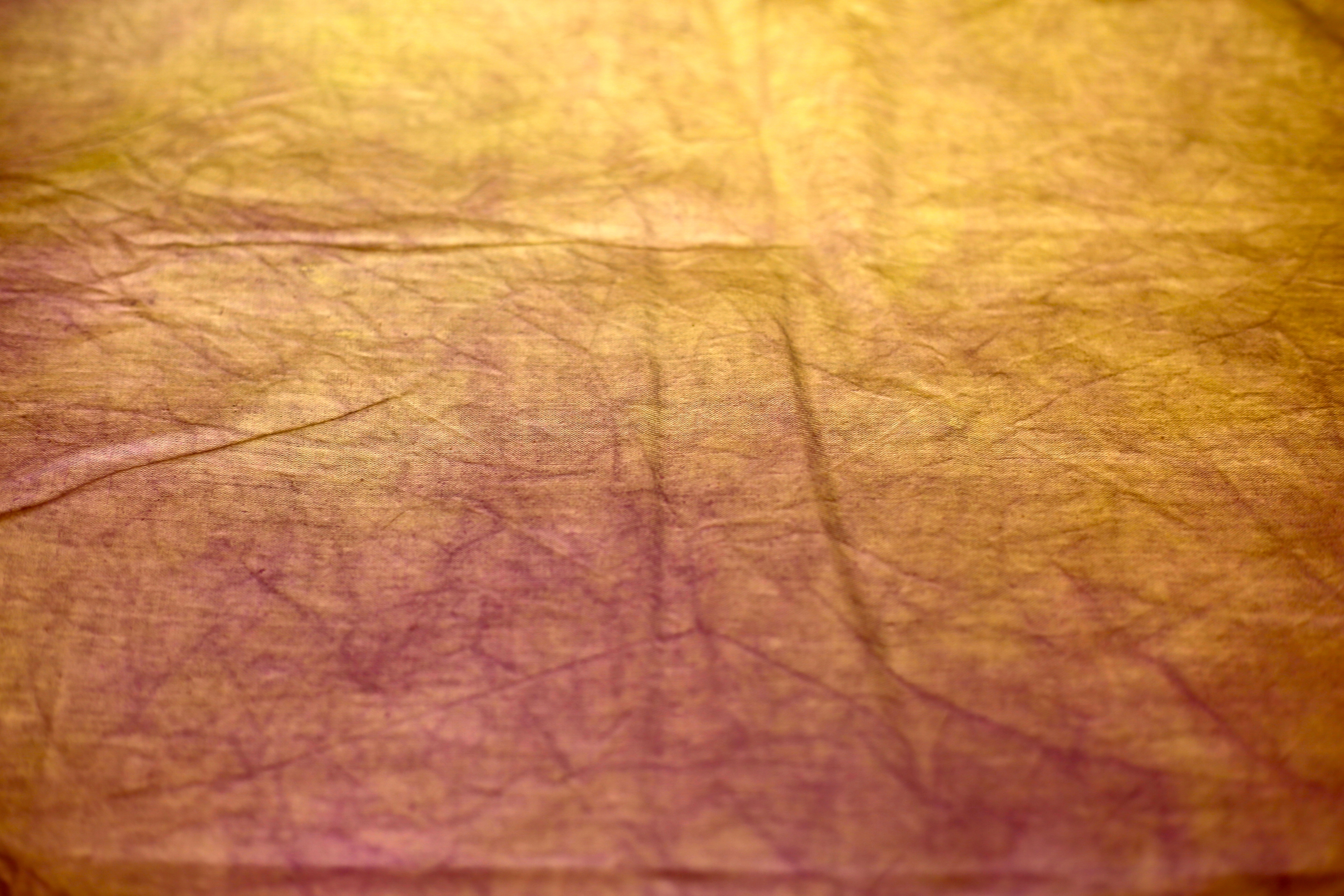 5760x3840 Free Images Texture, Leaf, Floor, Old, Brown, Rough, Yellow