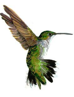236x309 Color Hummingbird Drawings Hummingbird Color Pencil Drawing