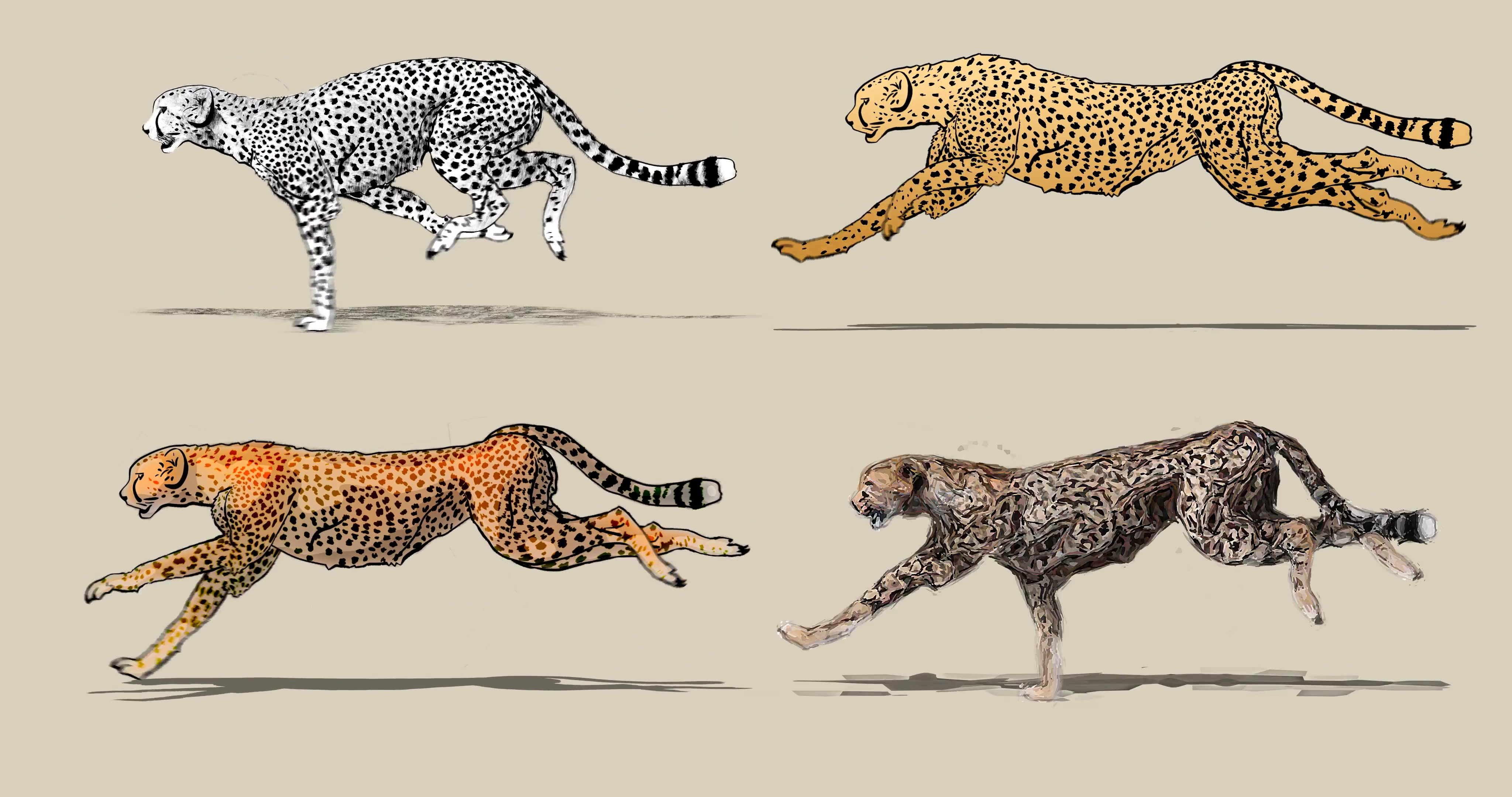 4096x2160 Cartoon Cheetah Running. Four Different Drawing Style Pencil