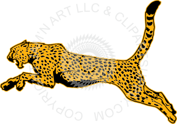361x254 Cheetah