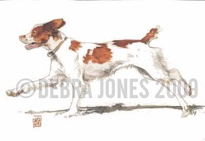 400x276 Dog A Day Art Blog May 2009