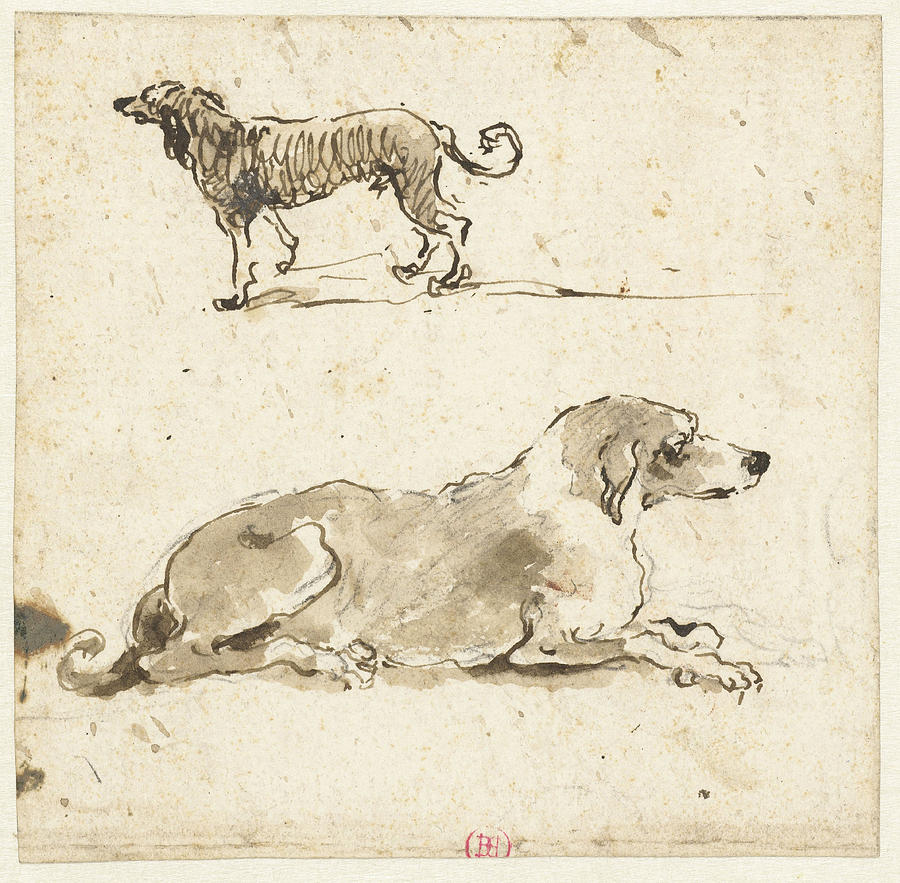900x883 Reclining And A Running Dog, Francesco Guardi Drawing By Quint Lox