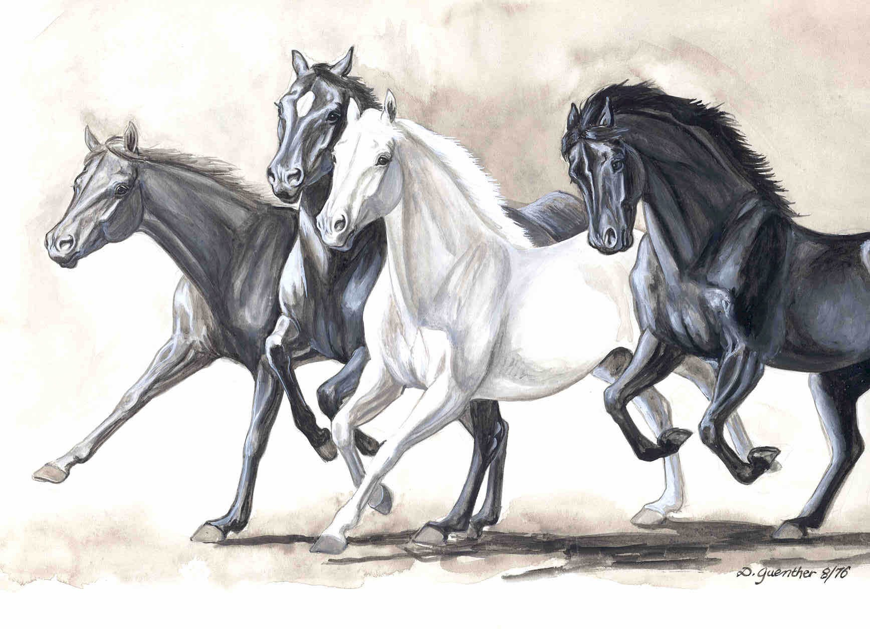 1736x1256 Running Horse Sketches
