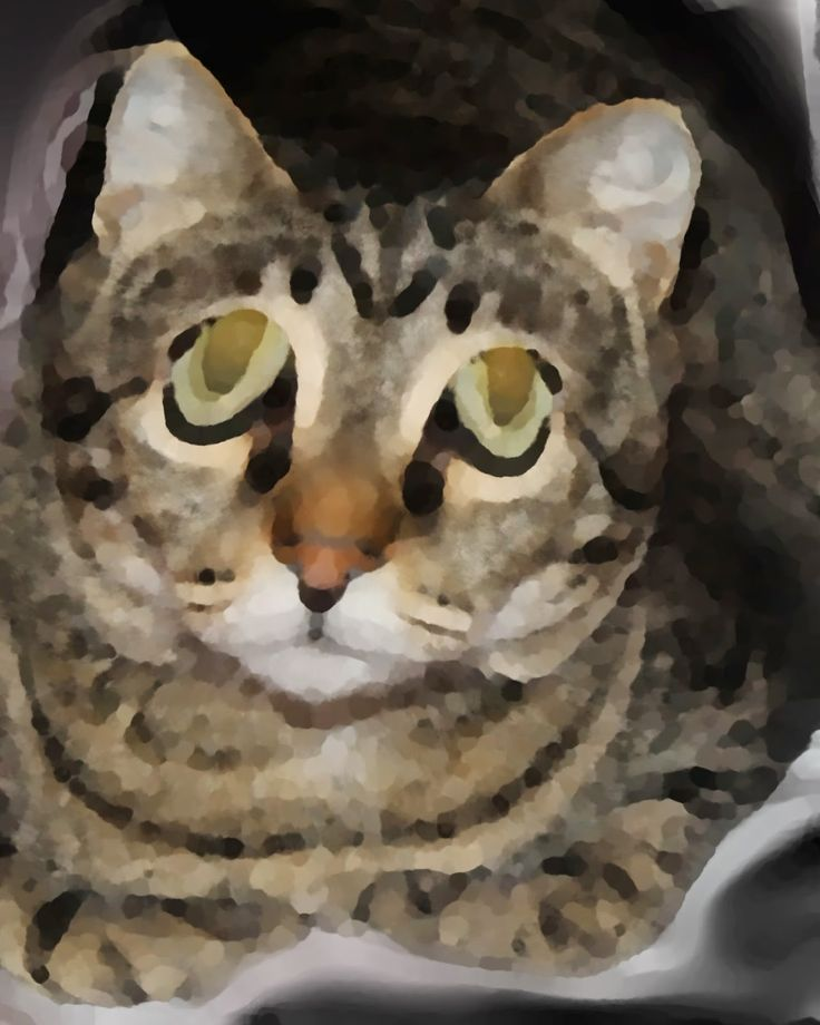 736x920 16 Best Cats Drawing Art Images On Cat Paintings