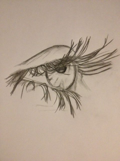 480x640 drawing